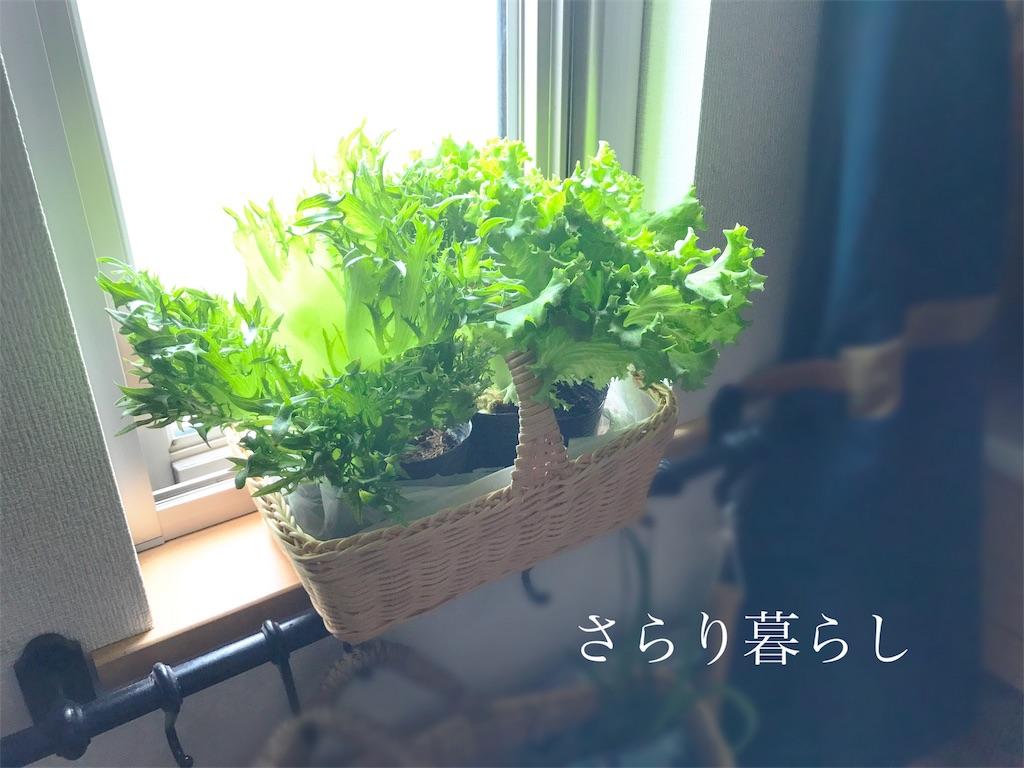 f:id:yuzushiohamachi:20180507235939j:image