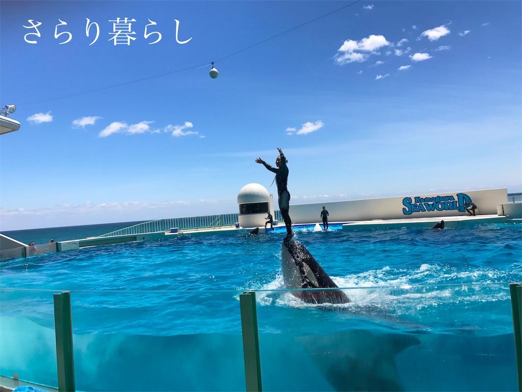 f:id:yuzushiohamachi:20180522003035j:image