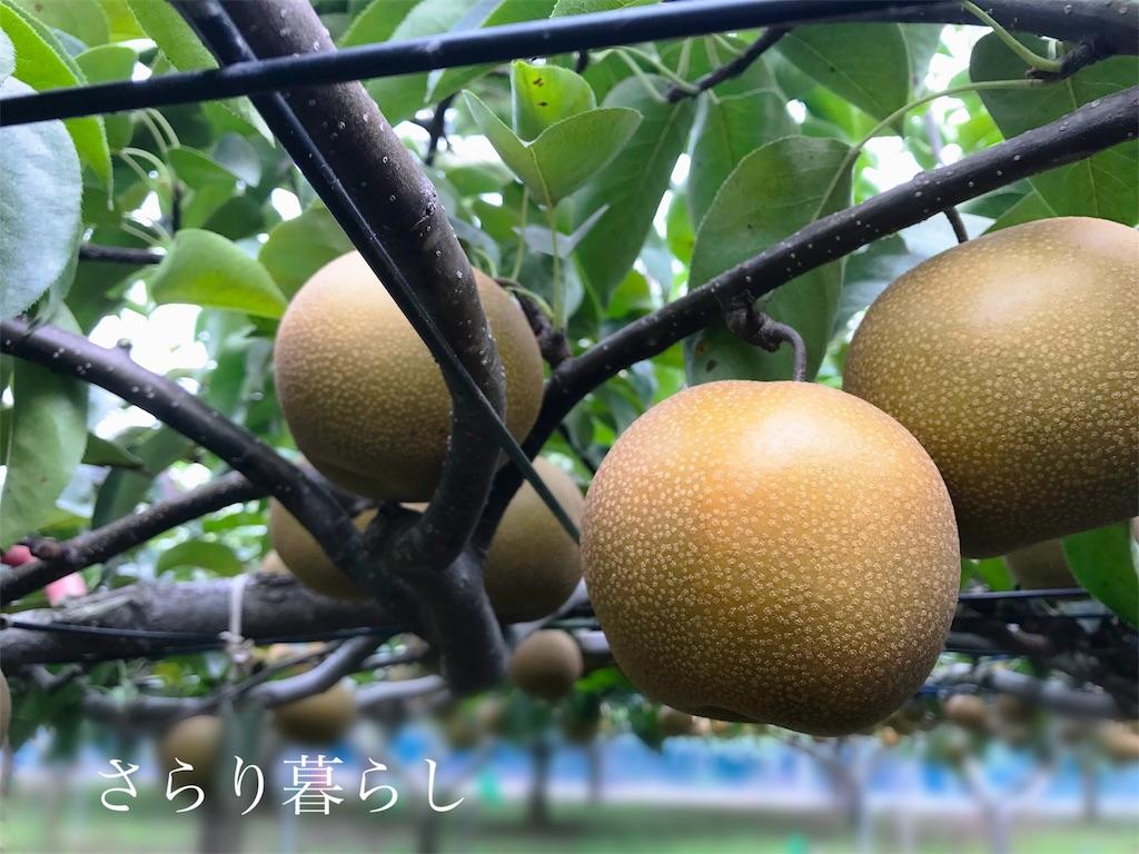 f:id:yuzushiohamachi:20180831194450j:image