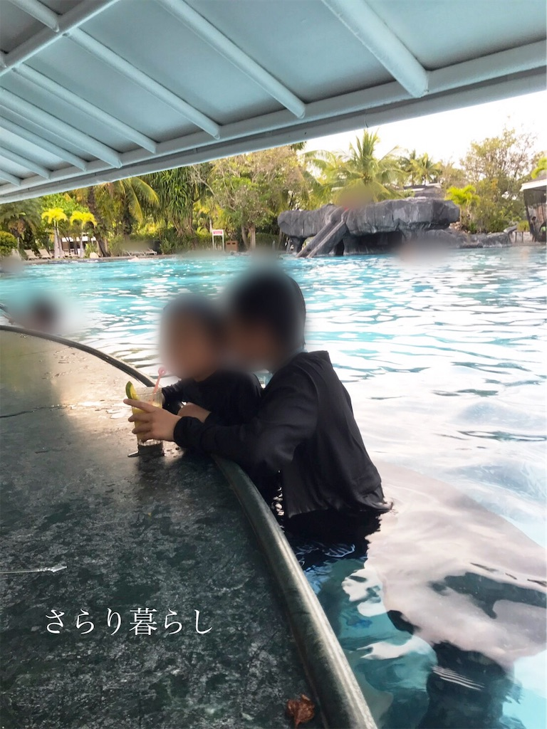 f:id:yuzushiohamachi:20190428224913j:image