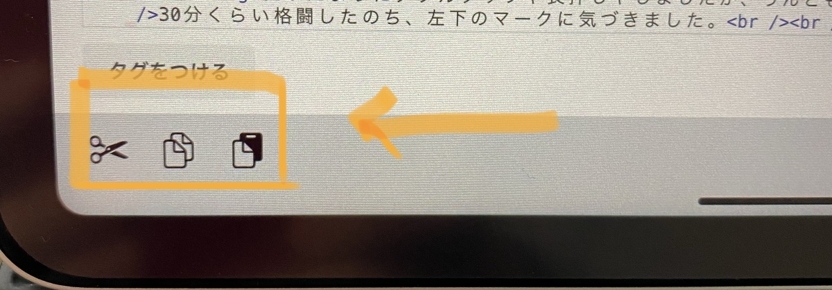 iPad左下のマークの写真