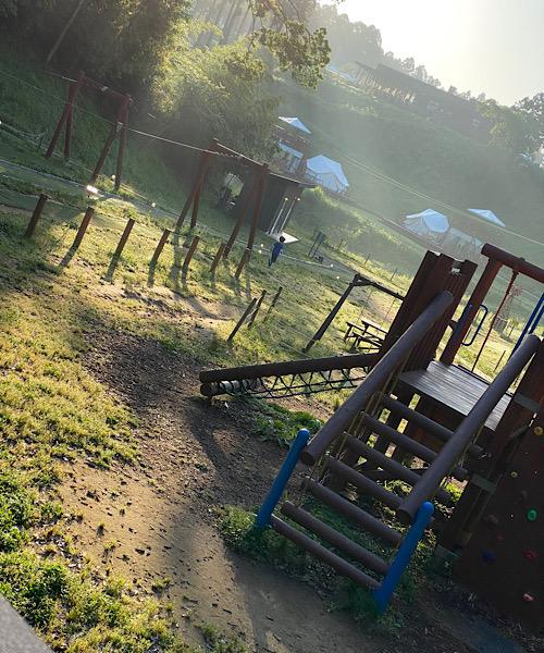 朝の景色の写真