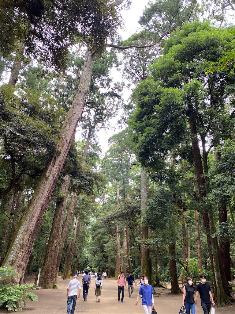 f:id:yuzuta719:20210626150014j:image
