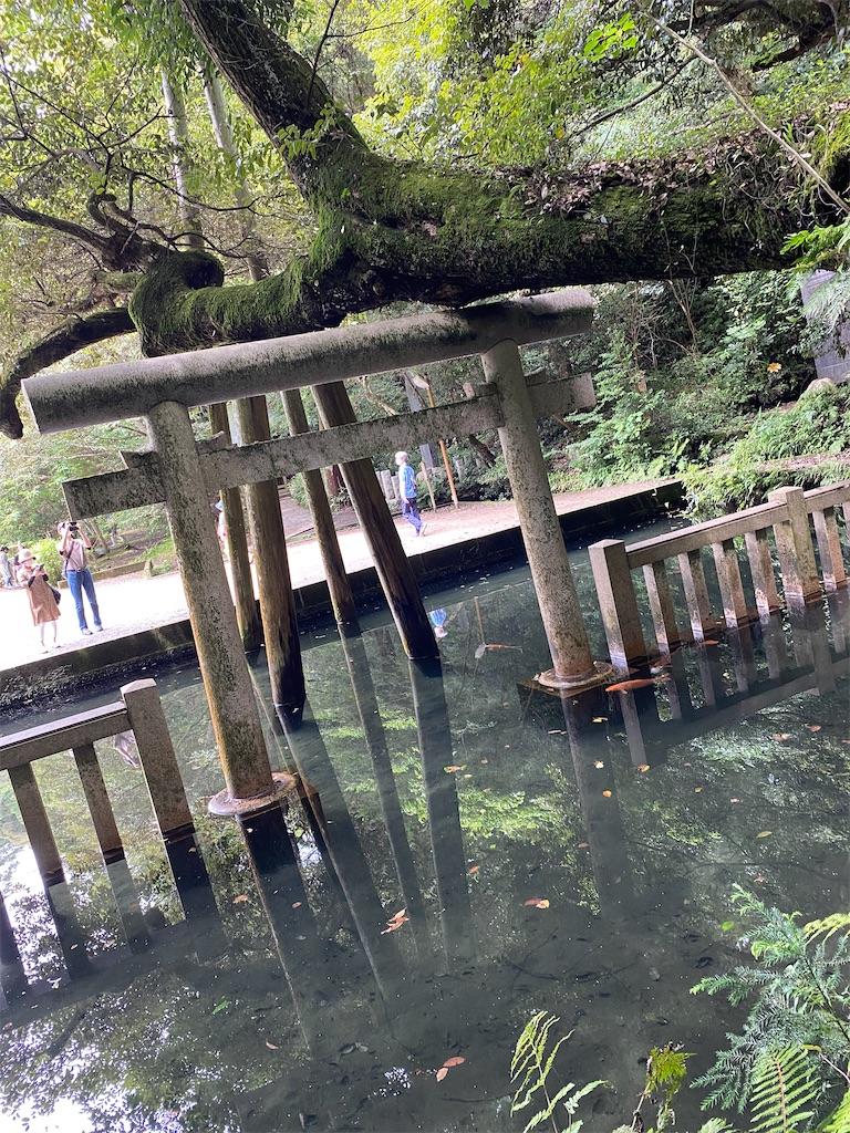 f:id:yuzuta719:20210626150049j:image