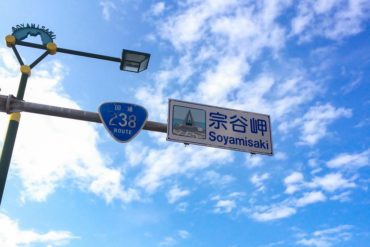 f:id:yuzutaso_san:20210101144457j:plain