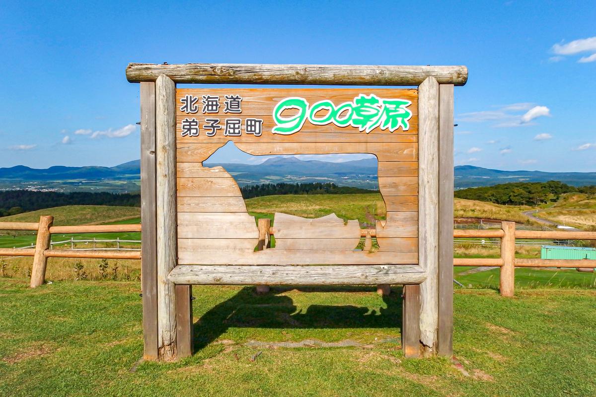 f:id:yuzutaso_san:20210101231529j:plain