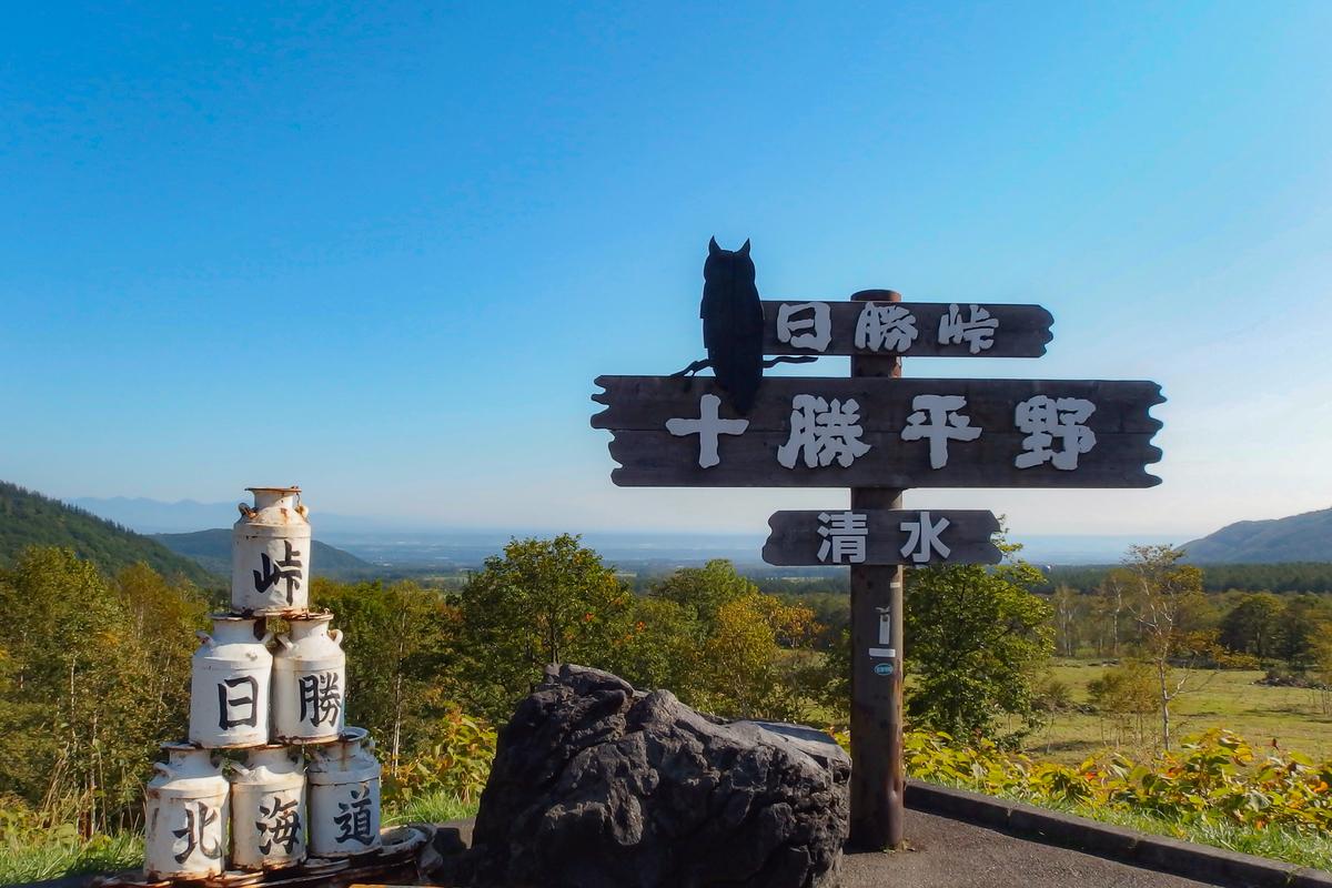 f:id:yuzutaso_san:20210102000008j:plain