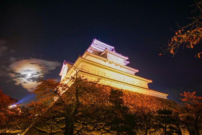 f:id:yuzutaso_san:20210127231536j:plain
