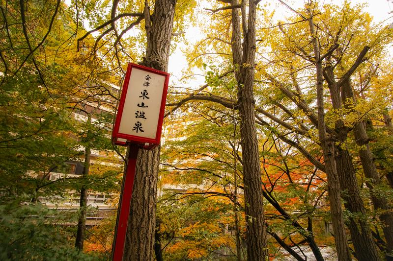 f:id:yuzutaso_san:20210127231543j:plain