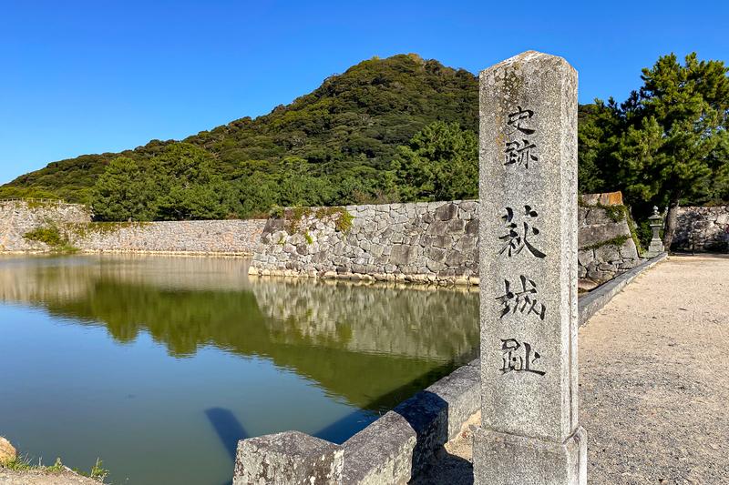 f:id:yuzutaso_san:20210129212235j:plain
