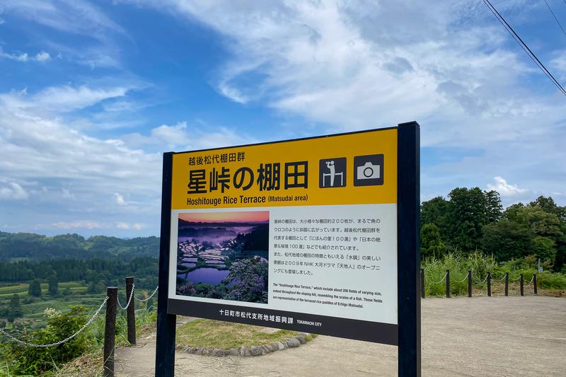 f:id:yuzutaso_san:20210228213906j:plain