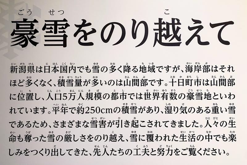 f:id:yuzutaso_san:20210228223838j:plain