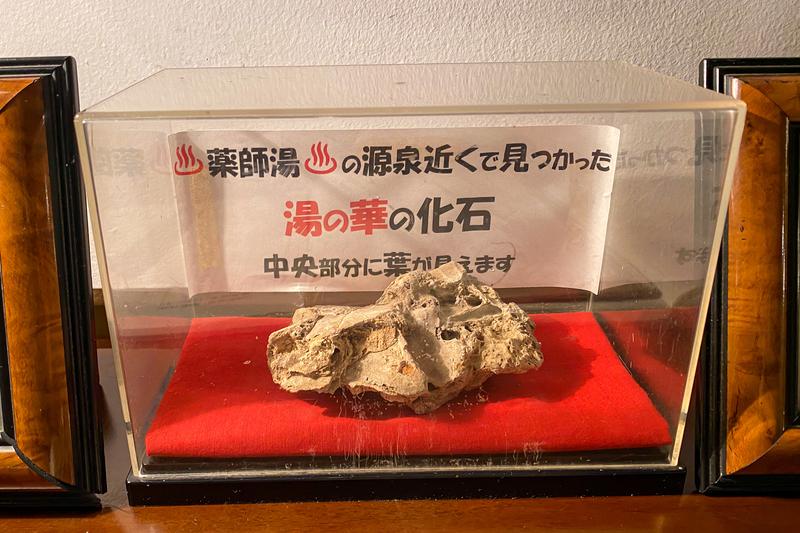 f:id:yuzutaso_san:20210314173400j:plain