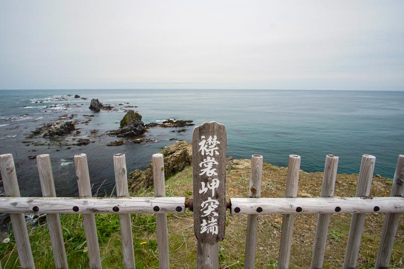 f:id:yuzutaso_san:20210501004918j:plain