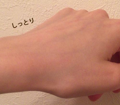 f:id:yuzuwasabi:20170120115948j:plain