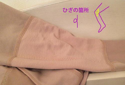 f:id:yuzuwasabi:20170215163552j:plain