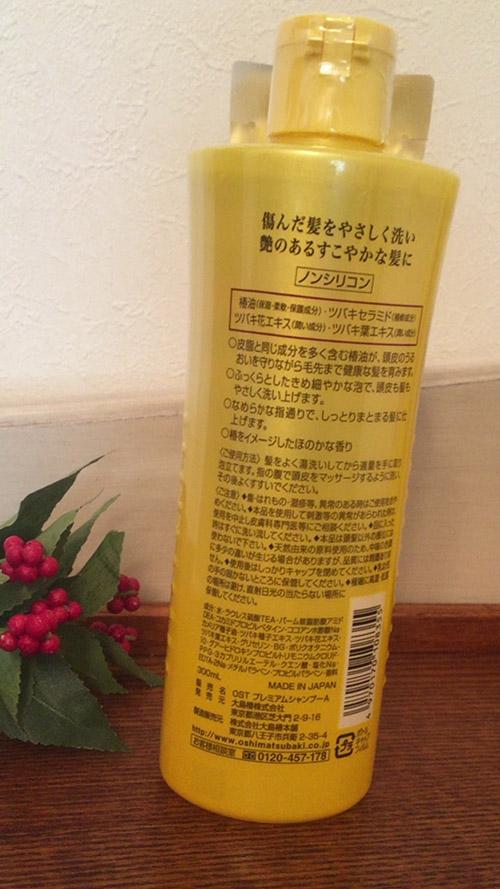 f:id:yuzuwasabi:20170305212053j:plain