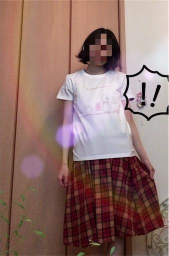 f:id:yuzuwasabi:20180203123950j:image