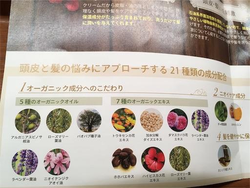 f:id:yuzuwasabi:20190601223941j:image