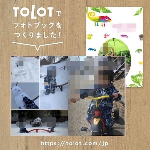 f:id:yuzuwasabi:20201109172400j:plain