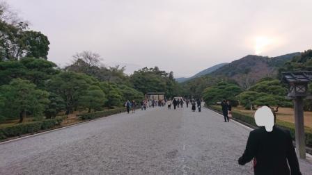 f:id:yuzuzanmai:20200123192624j:plain