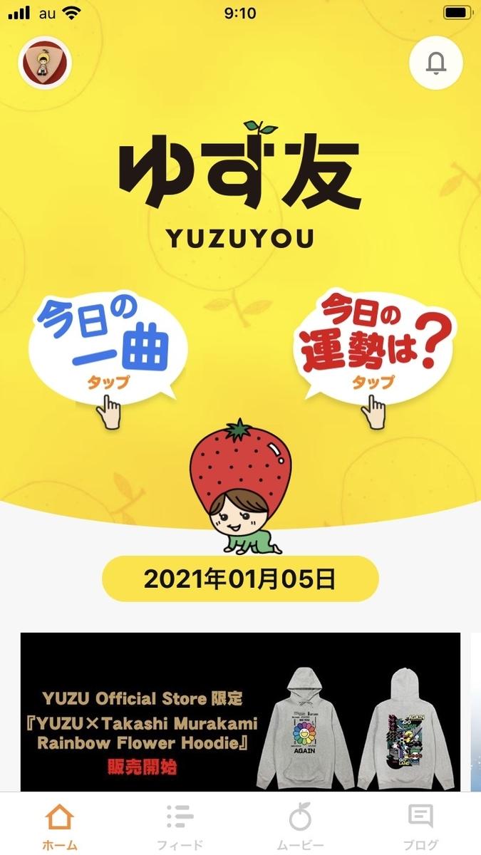f:id:yuzuzanmai:20210105222714j:plain