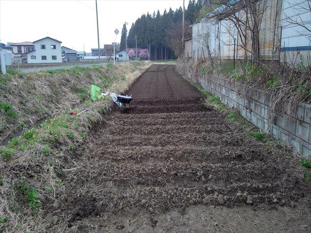 家庭菜園2年目開墾した畑の写真