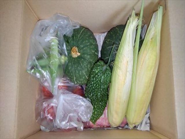 実家に持っていった夏の野菜セットの写真