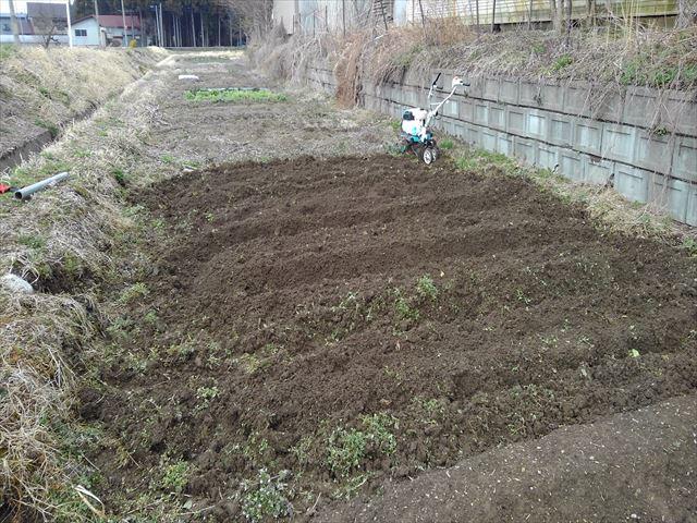 ジャガイモ用の畝立て後の写真