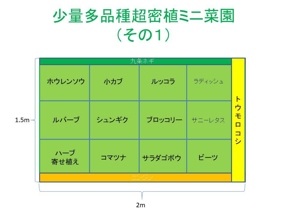 超密植ミニ菜園(その1)計画