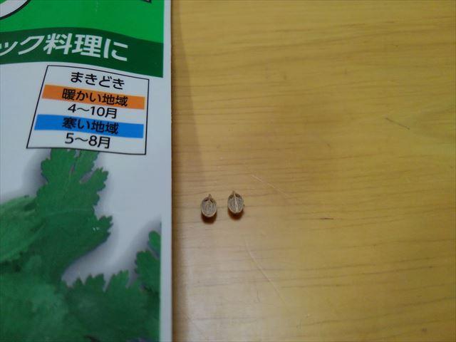 パクチーの種(半分に割った状態)
