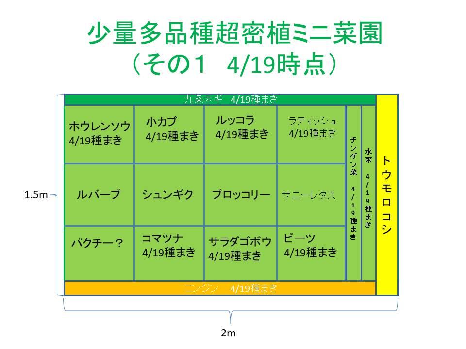 超密植ミニ菜園(その1)4/19時点