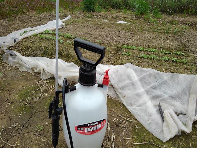 噴霧器で300倍希釈竹酢液を噴霧