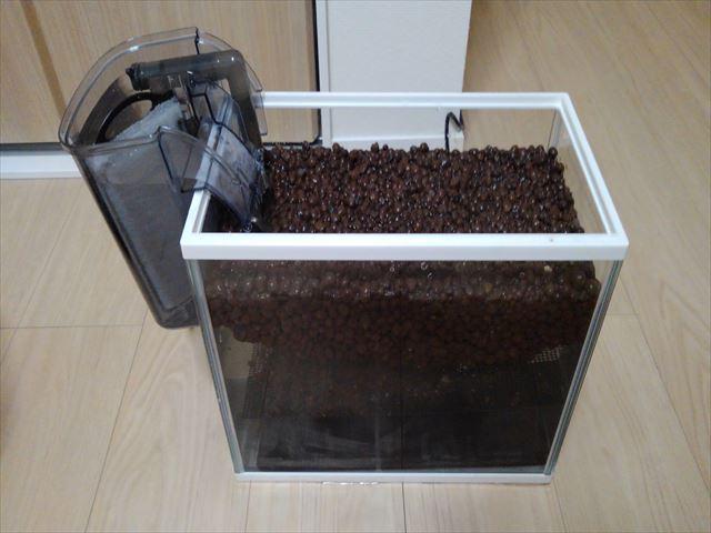 水槽にハイドロカルチャーを大量投入