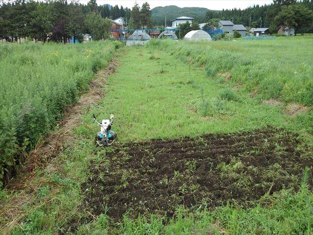 よっしー農園第二農場開墾作業中