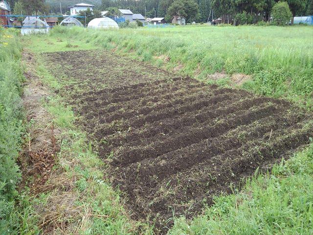 よっしー農園第二農場開墾(手前側畝立て後)