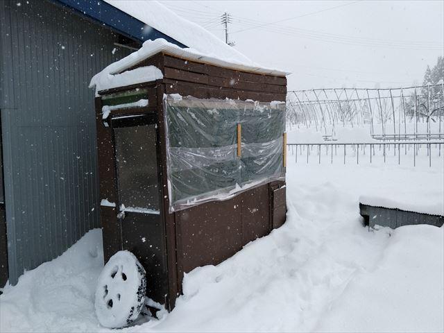 雪の中の鶏小屋