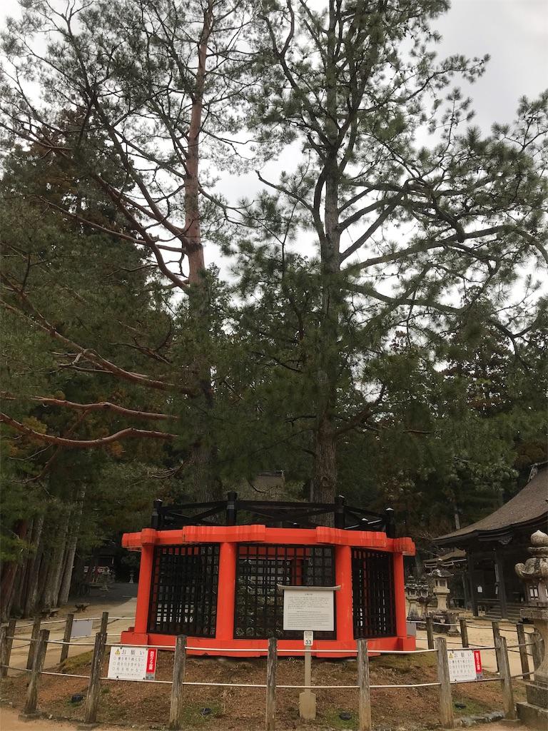 f:id:zaihamizunogotoshi:20190328023939j:image