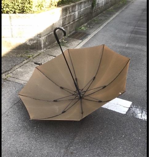 f:id:zaihamizunogotoshi:20190506085359j:image