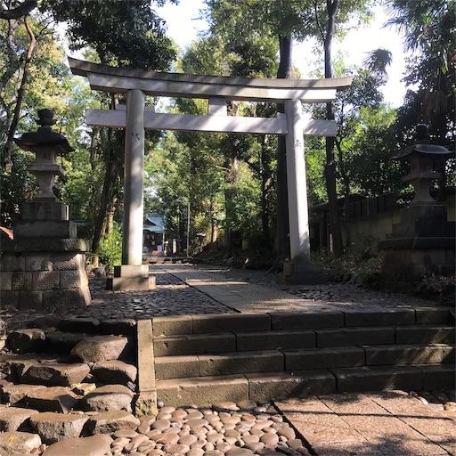 f:id:zaihamizunogotoshi:20191016124318j:image