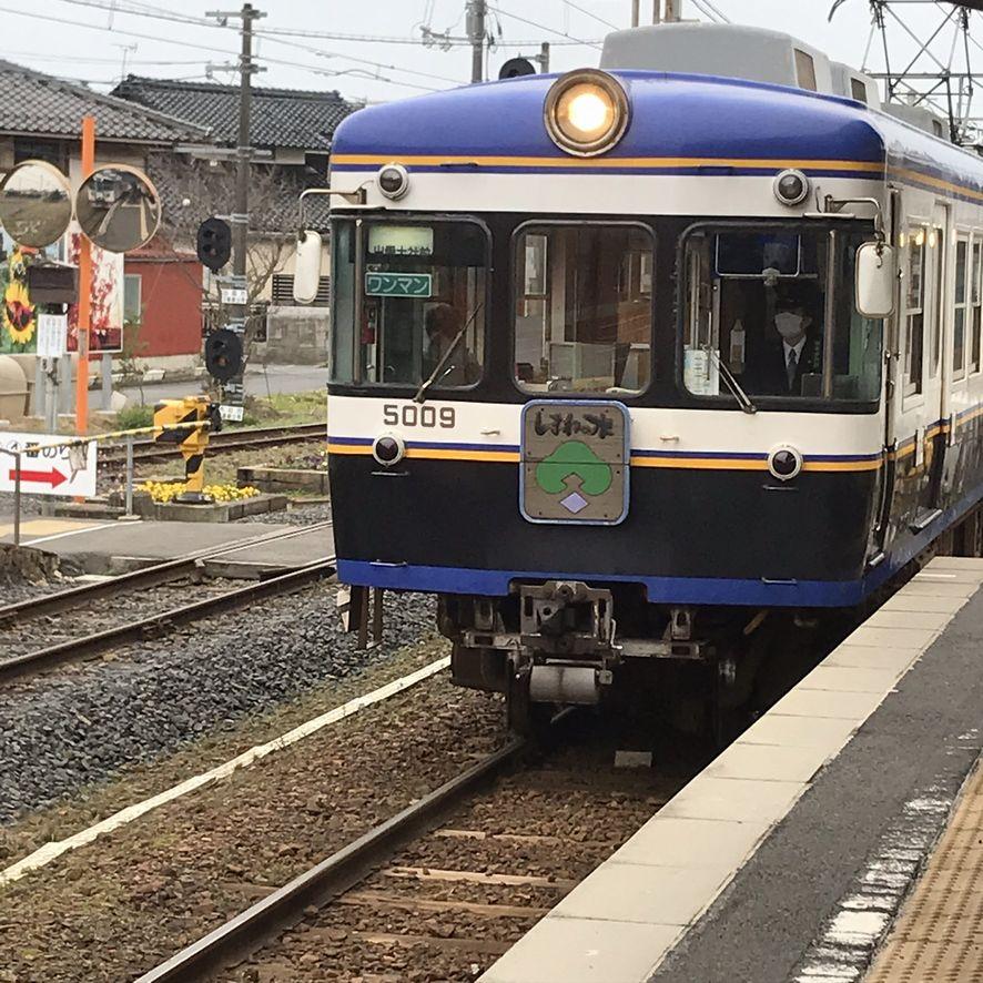 f:id:zaihamizunogotoshi:20200218054347j:plain