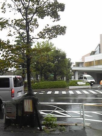 f:id:zaikichi:20110921150000j:image