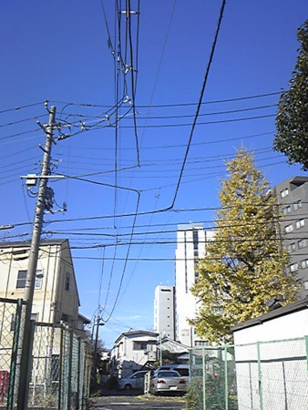 f:id:zaikichi:20111228133700j:image