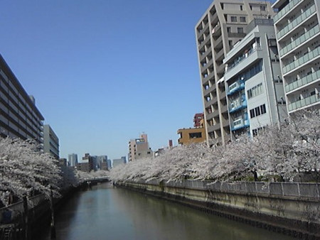 f:id:zaikichi:20120408113100j:image