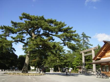 f:id:zaikichi:20120802154942j:image:w360