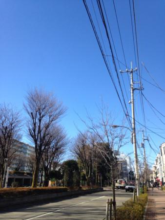 f:id:zaikichi:20170108211935j:image:h320