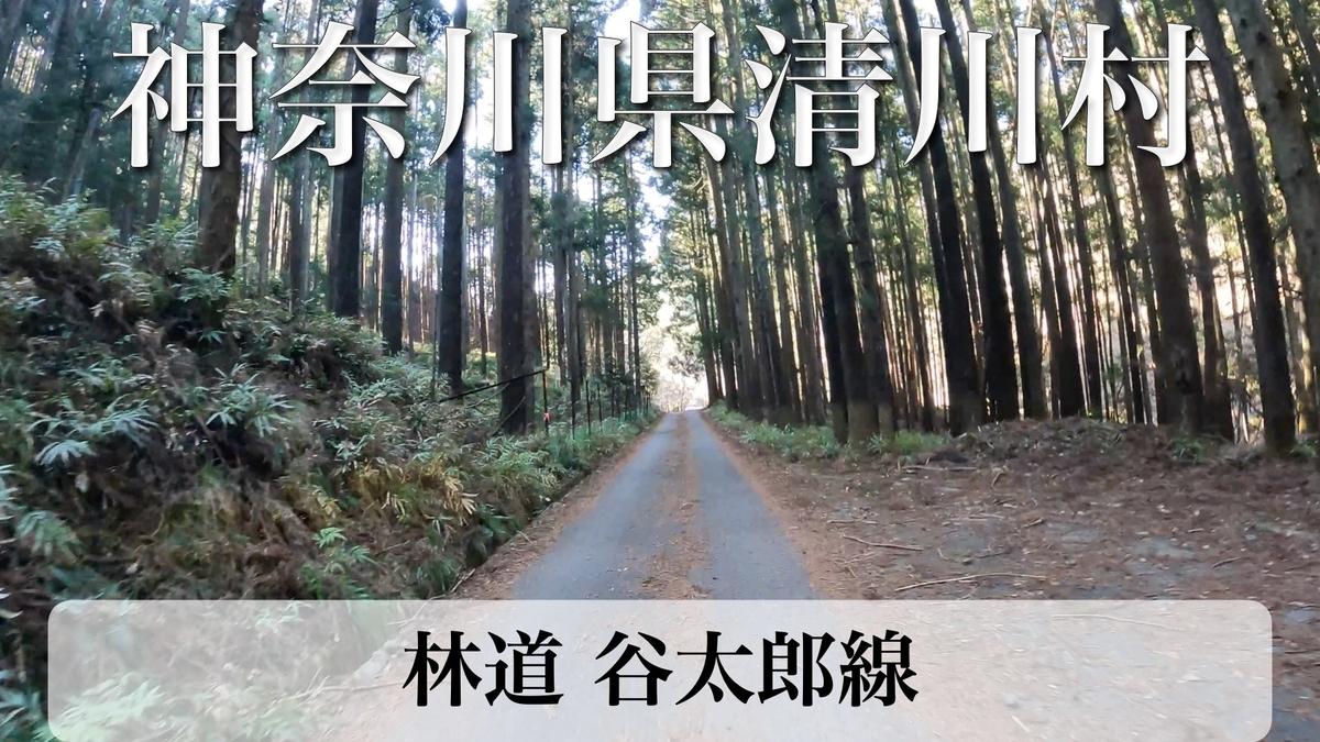 f:id:zakiyamatakashi:20210306073713j:plain