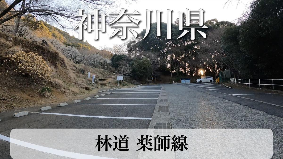 f:id:zakiyamatakashi:20210319171305j:plain