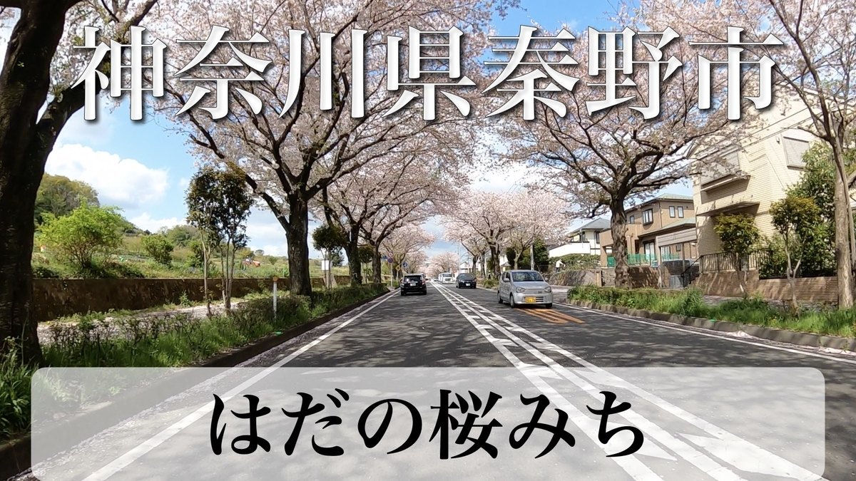 f:id:zakiyamatakashi:20210404085608j:plain