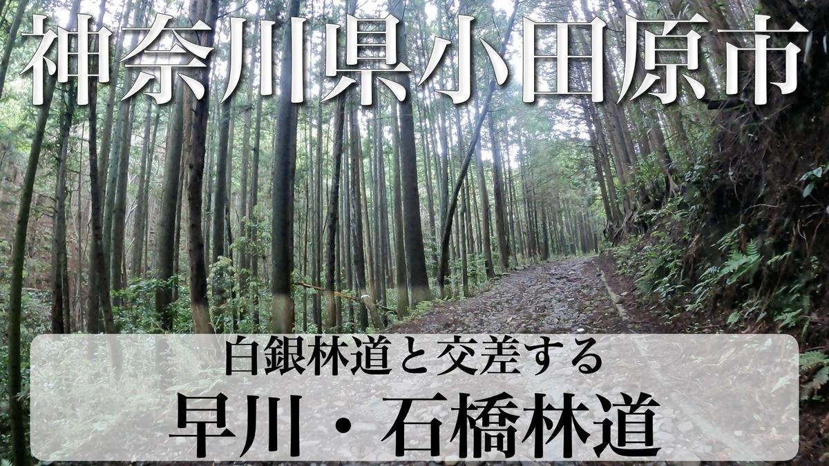 f:id:zakiyamatakashi:20210612184858j:plain